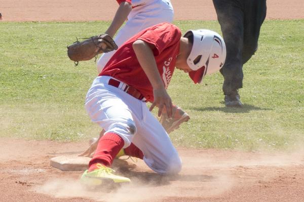 Ferrara Baseball, ultimi risultati positivi. U12 super col Pianoro e molto altro